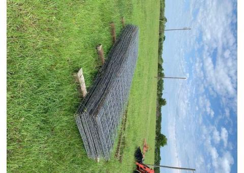 16 ' cattle panels